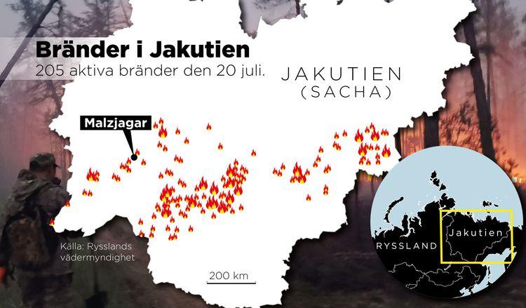 Grafik över bränderna i Jakutien.