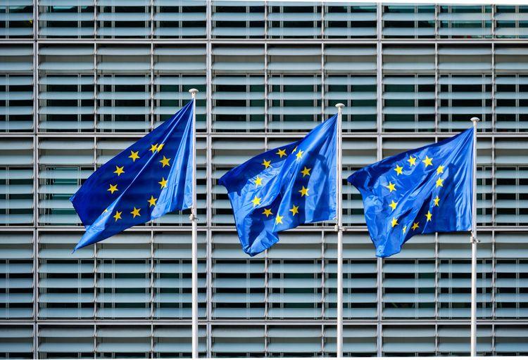 En tredjedel av EU:s skogar finns i Sverige och Finland och där tycker EU-kommissionen att trakthyggesbruk ska undvikas framöver.