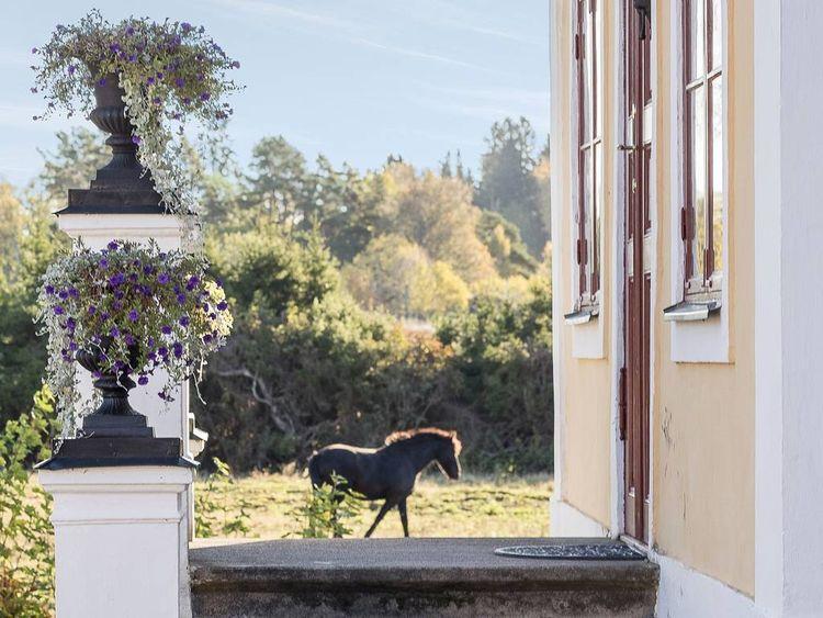 Bild på Långbro gård.