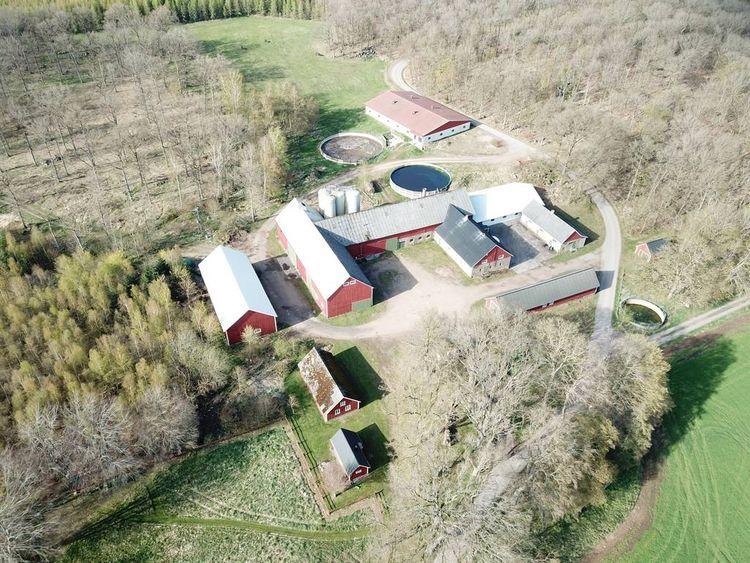 Gården bedrev grisproduktion fram till förra året. Det nyaste stallet har plats för 624 slaktsvin men kan också byggas om för andra verksamheter.