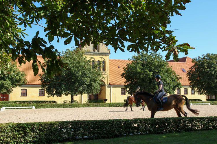 Hästar på en ridbana och ett gult hus.