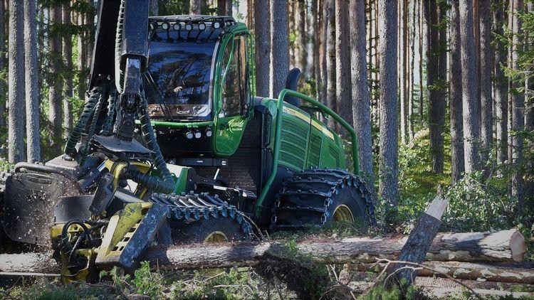 Skördare i arbete i skogen