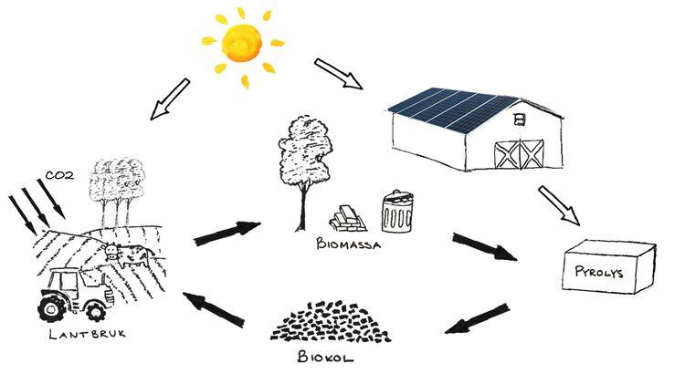 Skiss över kretsloppet från atmosfärisk koldioxid till biokol.