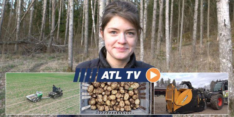ATL TV: Han byggde stenplockare till ATV