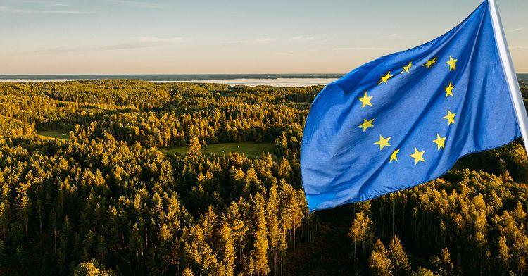 EU-flagga inklistrad på bild av svensk skog.