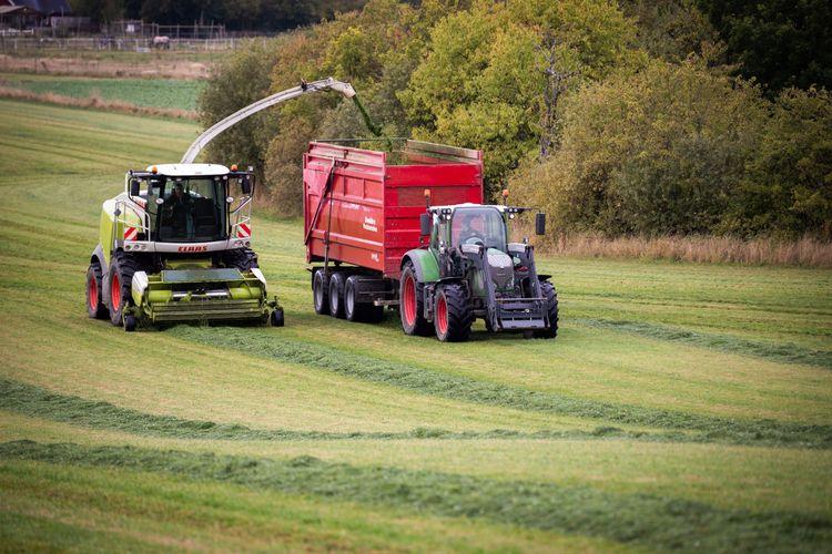 Traktor och tröska arbetar med vallskörd på fält.