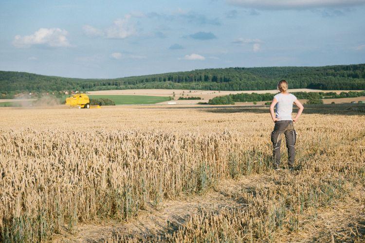 Kvinna står i vetefält och tittar på skördetröska.