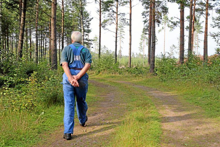 Äldre man i snickarbyxor som vandrar bort från kameran på en liten skogsväg.