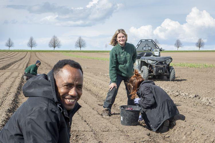 Abdulkarim Hassan Afa från Eritrea (till vänster) är fast anställd i Magdalena Hermelins grönsaksodling.
