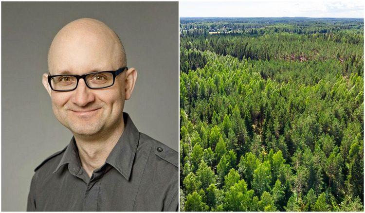 Bild på Thomas Pettersson, docent i ekonomisk historia vid Umeå universitet och skog.