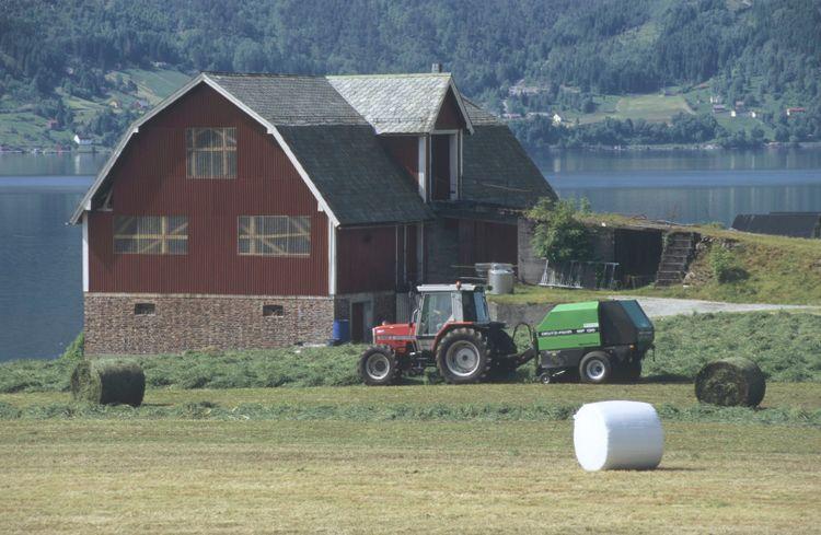 Traktor vid fjord.