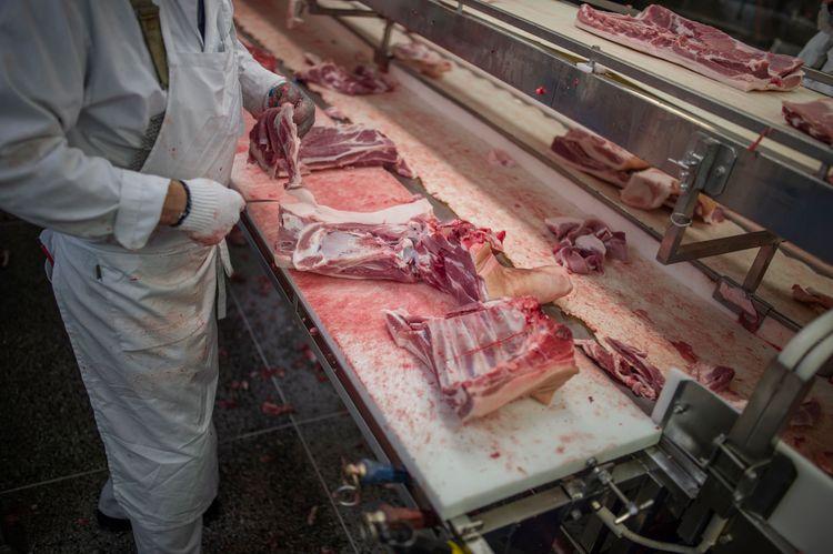 Styckning av griskött.