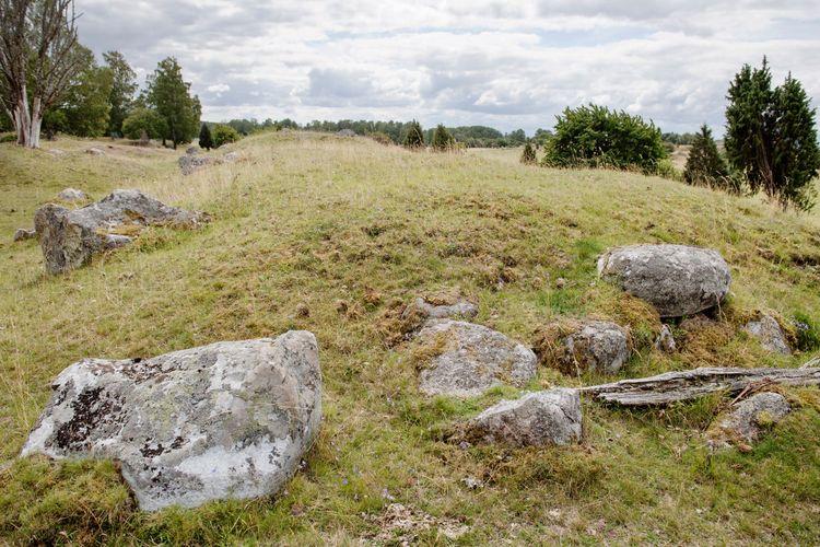 Stenar på ett grönt fält.