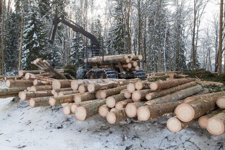 Timmer och skogsmaskin.