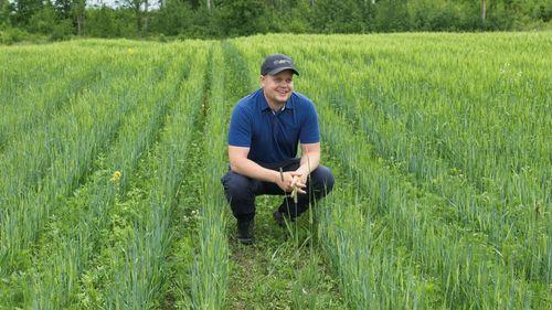 Höståkerböna testas i större skala – här är utmaningen