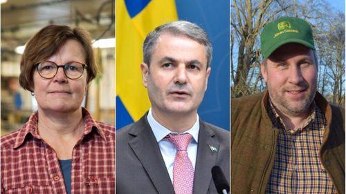 Avskaffad ministerpost möter kritik från flera håll