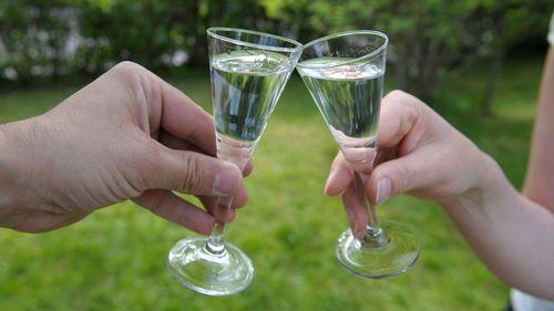 Svensk vodka får spädas med vatten utomlands
