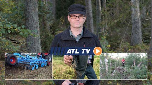 ATL TV: Många drabbade av dåliga plantor