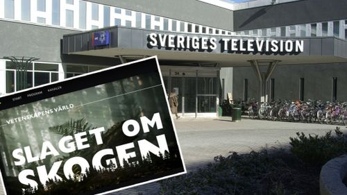Myndigheter kritiserar SVT-serie – men anmäler inte