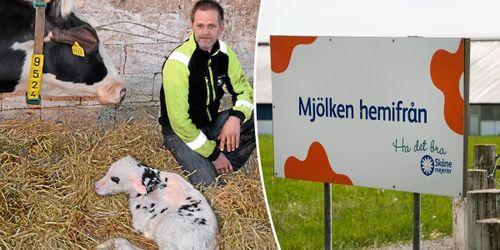 Skånska mjölkbönder vill ha nytt pristillägg