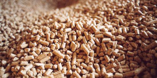 Trendbrott för pelletsexporten